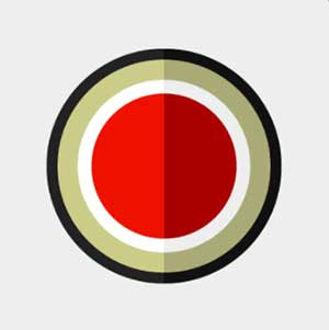 A white background with a red dot and black cirlce around it