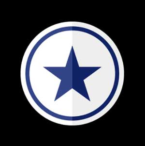 A blue star seen on the sides of a particular shoe