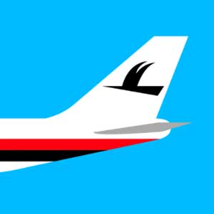 An arplane tale with a black bird on it