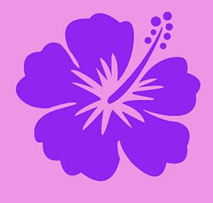 Pink Hawiian tropical flower.