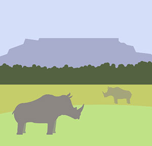 Rhinos in the wild.