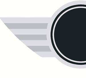 Silver wing and a black circle in the middle