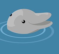 IcoMania Answers Flipper
