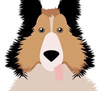 IcoMania Answers Lassie
