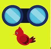 Icon Pop Word Answers Hobby Level 9 Bird Watching