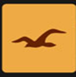 A brown bird .