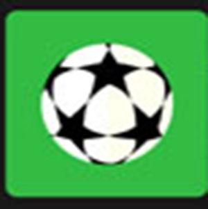 A soccer ball .