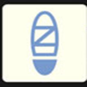 A blue shoe .