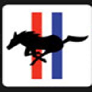 A horse running .